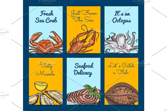 Vector Card Or Flyer Templates With Colored Hand Drawn Seafood