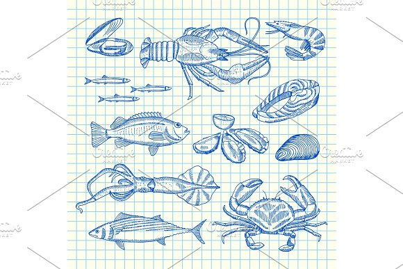 Vector Hand Drawn Seafood Elements Set