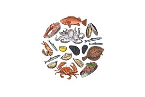 Vector hand drawn seafood elements in form of circle illustration