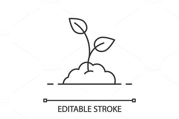 Growing Sprout Linear Icon
