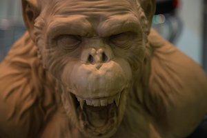 Evil monkey - face