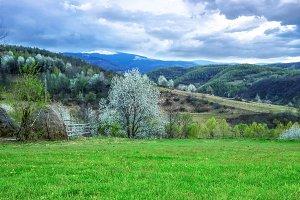 Spring mountain scenery
