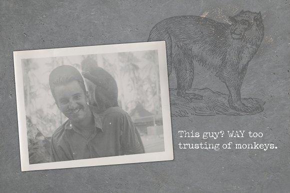 Never Trust A Monkey Vintage Set