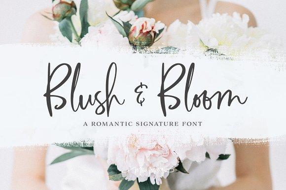 SALE Blush Bloom Signature Type