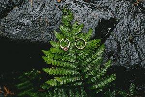 5 Wedding Rings Photos
