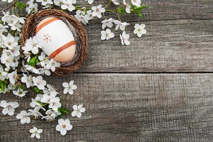 Easter egg and spring  blossom