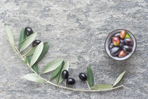 Olive branch on a stone background