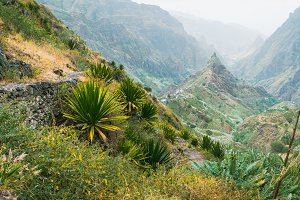 Photographer takes a picture of amazing lush Xo-Xo valley. Rugged Lombo de Pico in the middle. Santo Antao Cape Verde Cabo Verde