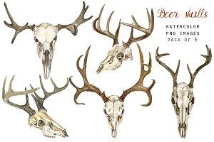 Watercolor Deer Skulls