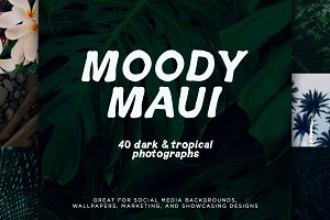 Tropical Photo Pack: Moody Maui