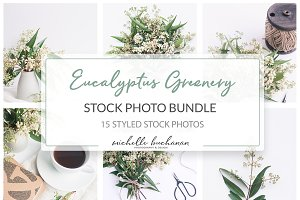 Eucalyptus Greenery Stock Bundle