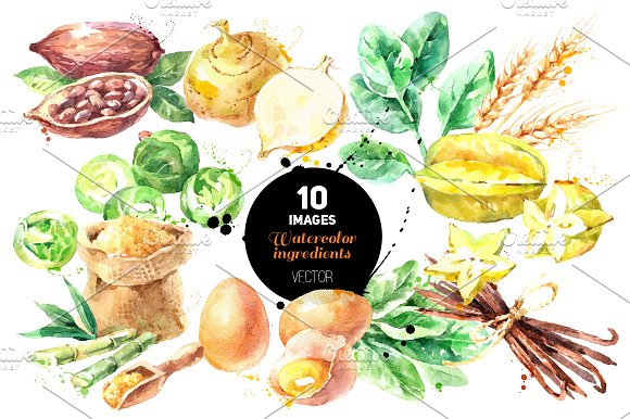 Watercolor Ingredients Vector Set