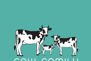 Vector of cows family.  Farm Animal.