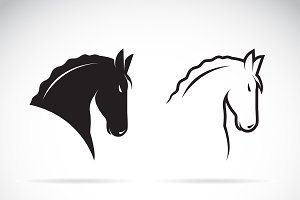 Vector of horse head design.