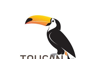 Vector of toucan birb design.