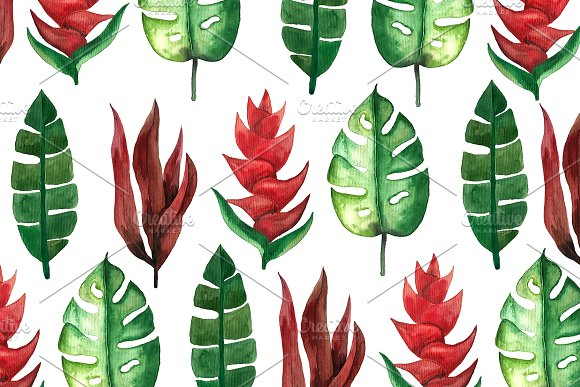 Tropical Summer Watercolor Plants