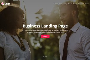 Sena - Business Landing Page