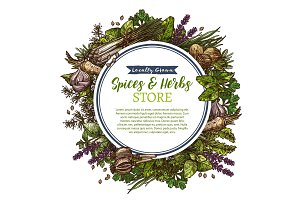 Spices and herbs farm store vector sketch poster