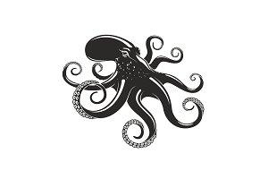 Octopus vector ocean seafood mollusc icon