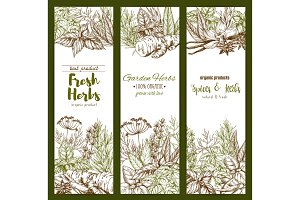 Spices and herbs farm store vector sketch banners
