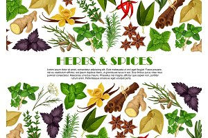 Spices and herbs farm store vector poster design