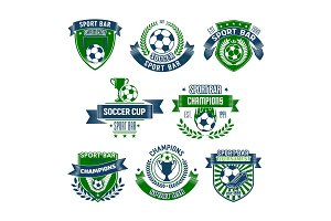 Vector football isolated icons for sport bar