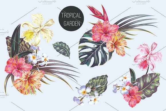 Tropical Exotic Flowers Illustration