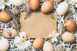 Easter background with eggs, flowers and feathers, copy space