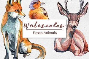 Watercolor Forest Animals – Set of 6