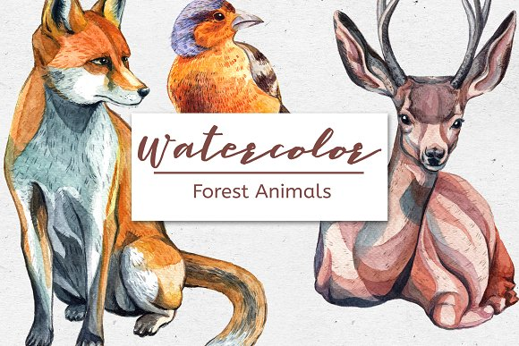 Watercolor Forest Animals Set Of 6
