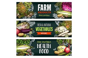 Vector fresh organic vegetables sketch banners