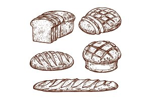 Vector sketch bread icons of bakery shop