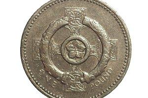 1 Pound coin