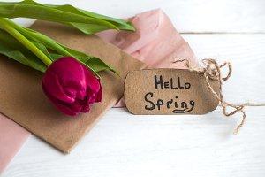 inscription Hello, spring