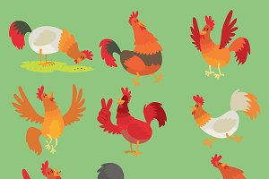 Vector rooster cock chicken cartoon