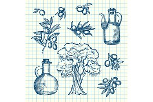Vector hand drawn olive branches, bottles and tree on cell sheet