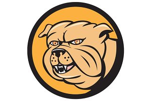 Bulldog Head Circle Cartoon