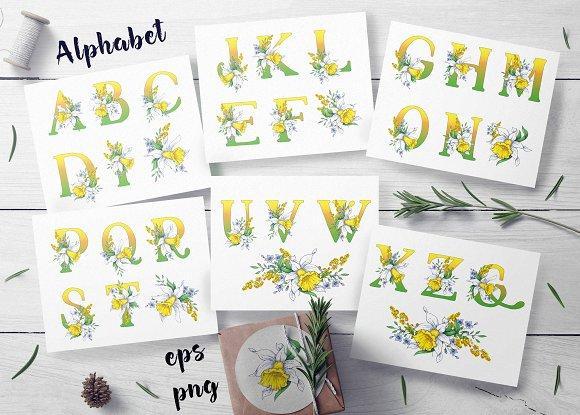 Daffodils Spring Alphabet
