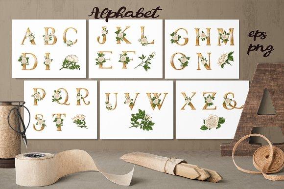 White Roses Vector Alphabets Set