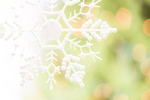 White Glittery Snowflake