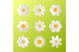 White paper art flowers set