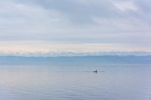Man paddling in dreamy lake