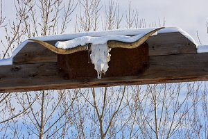 Ranch Gate and Snow