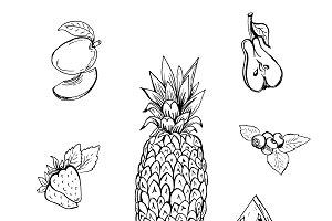 fruits in sketch style, hand drawn