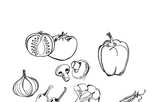 vegetables in sketch style, hand
