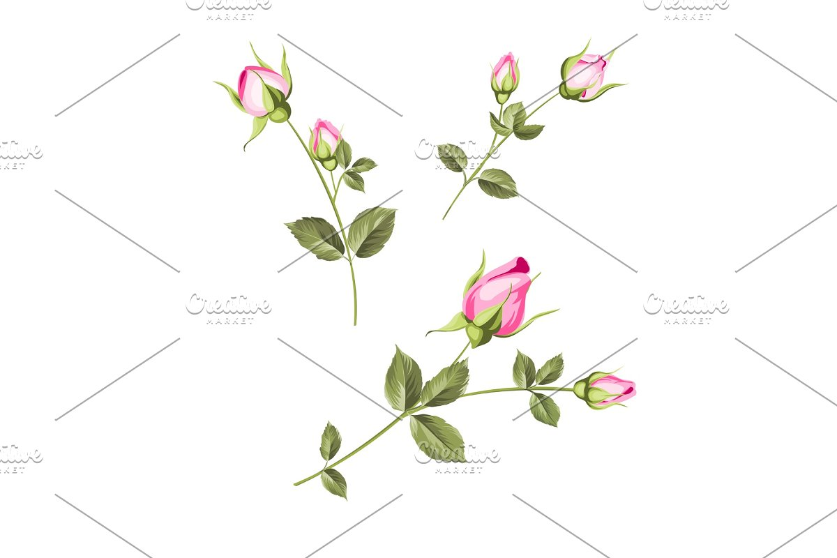 Spring flowers set. in Illustrations - product preview 8