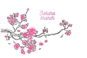 Colorful pink branch of tree