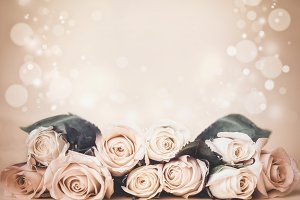 Beige floral background with roses
