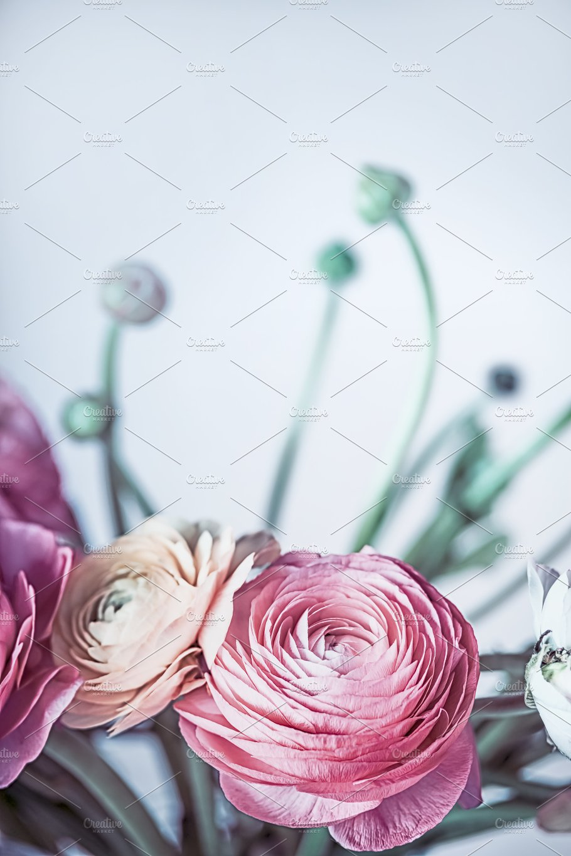 Lovely Pink Ranunculus Flowers Nature Photos Creative Market