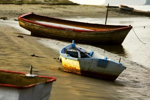 rowboats moored on seashore